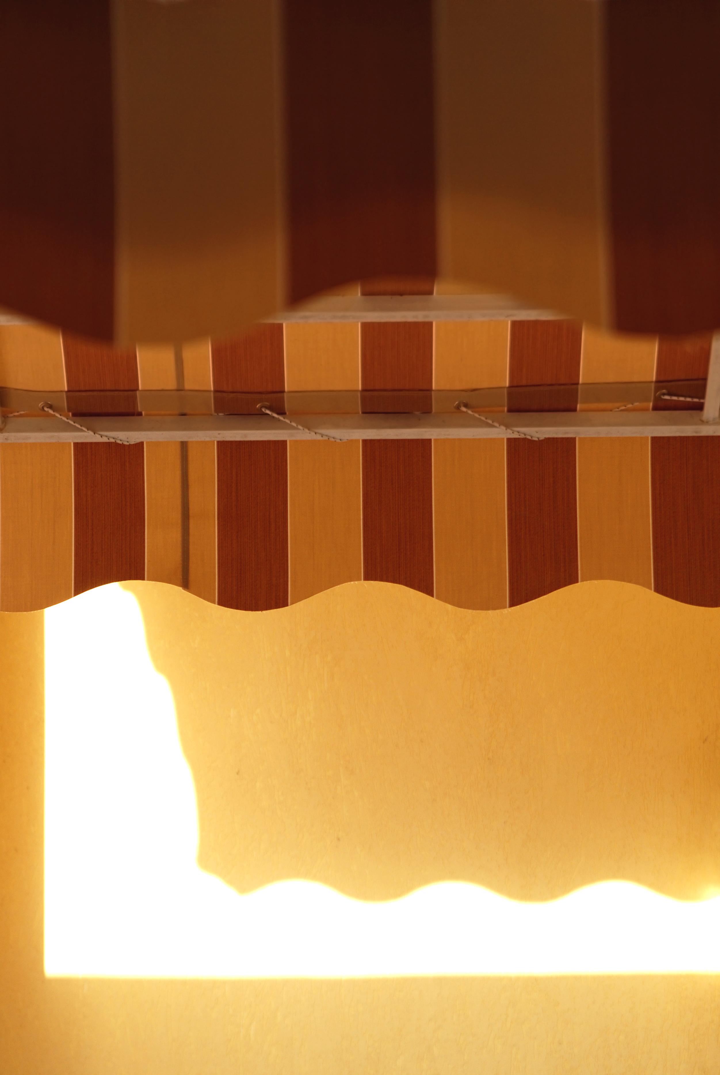 Product Spotlight: Sunesta Awnings