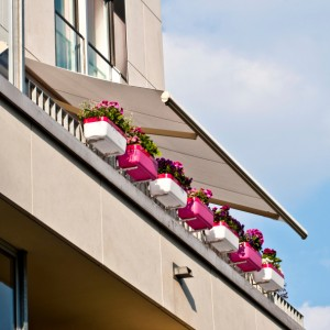 spring cleaning your awning flowers